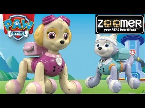 Paw Patrol Zoomer Skye & Everest from Spin Master - YouTube