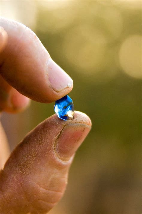 Sapphire Gemfields - Dig the Tropic